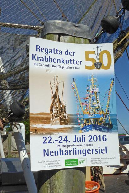 50-K-Regatta-2016-hf